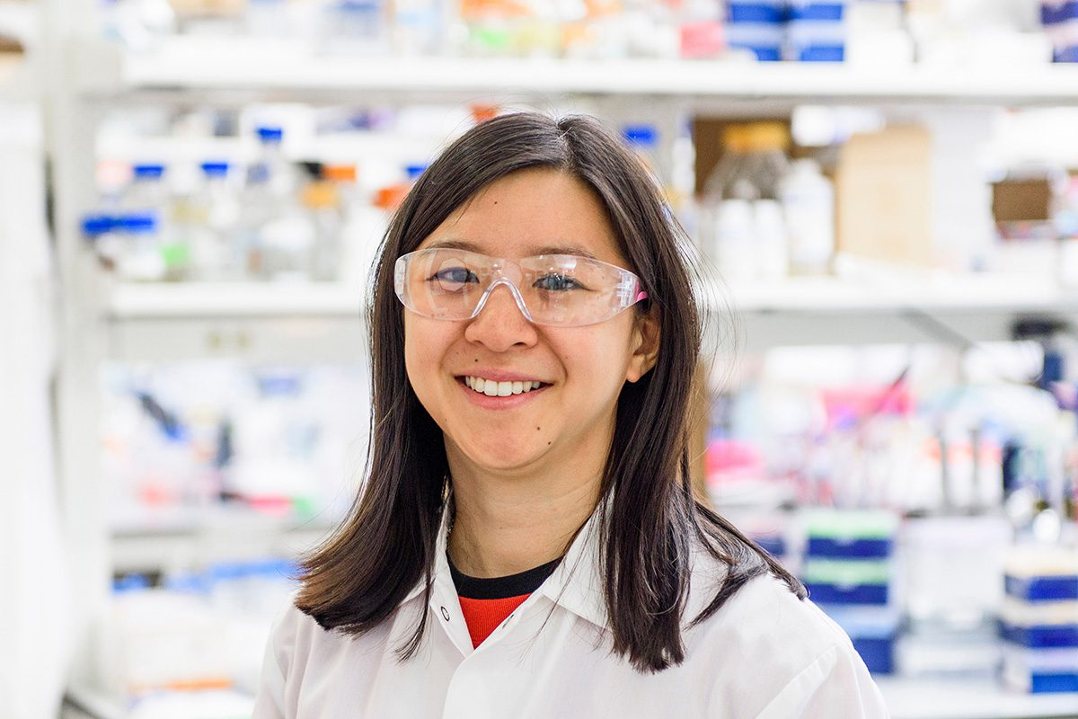 Angie Xie in the UW-Madison stem cell lab